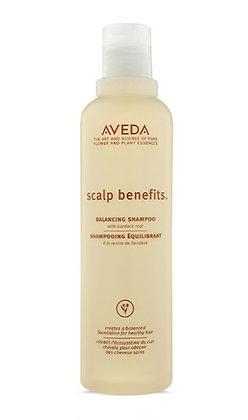 Scalp Benefits Shampoo