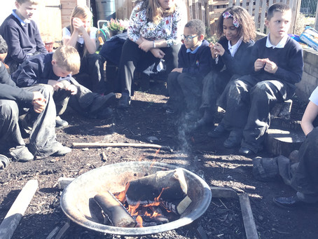 Forest School Weekly Roundup