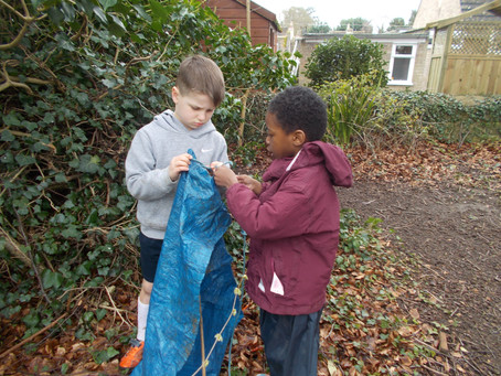 FOREST SCHOOL NEWS!