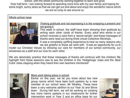 SCHOOL NEWSLETTER 13/11/2020