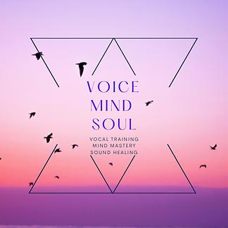 VoiceMindSoul (4).png