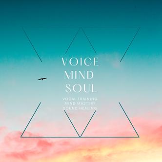 VoiceMindSoul (11).png