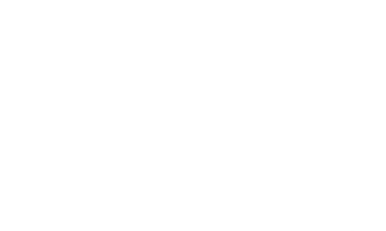 lineas-.png