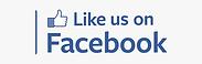 Facebbok like us logo.png
