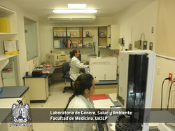 Universidad Autónoma de San Luis P.