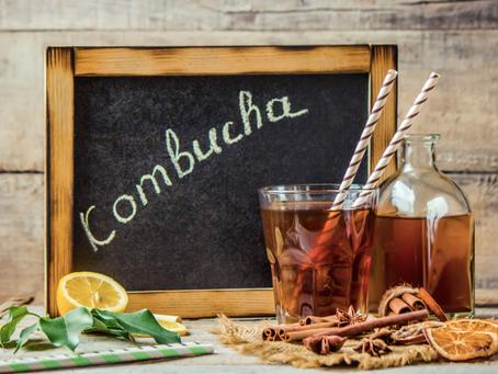 Kombucha: benefícios e dicas de receitas simples