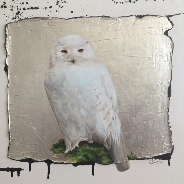 SNOW OWL 1 (detail)
