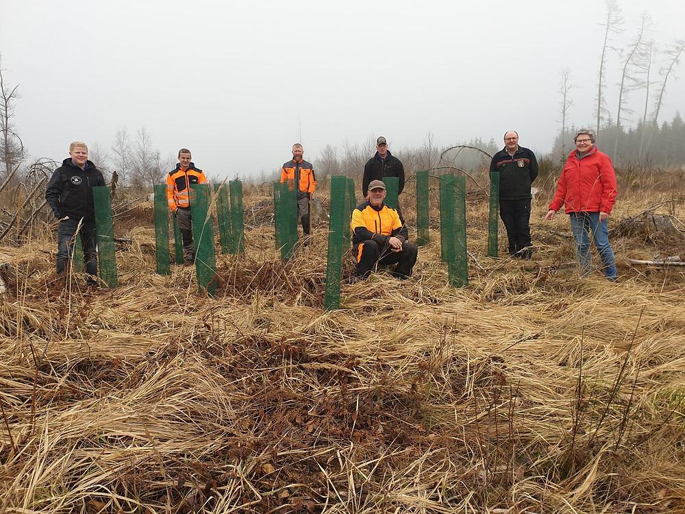 Waldarbeiter und Bürgermeisterin bei neu gesetzten Bäumen im angepflanzten Jubiläumswald Alpenrod