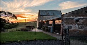 ivybrook-farm