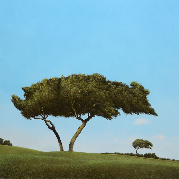 "Sea Oaks, 2015, by Robert Marchessault, oil/panel, 38"" x 38"".  Florida"