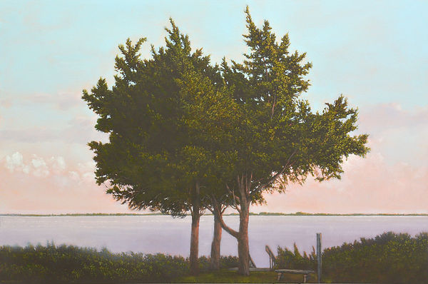 "Tre alberi a Buona Terra, 2017, by Robert Marchessault,  oil/panel, 24"" x 36"". New York City"