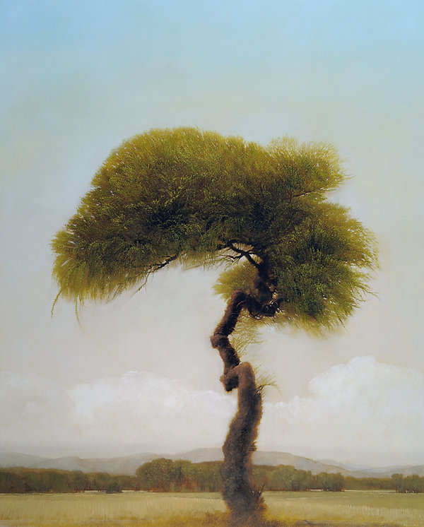 "Crown Willow, 2014, by Robert Marchessault, oil/canvas, 60"" x 48"". Oklahoma City"