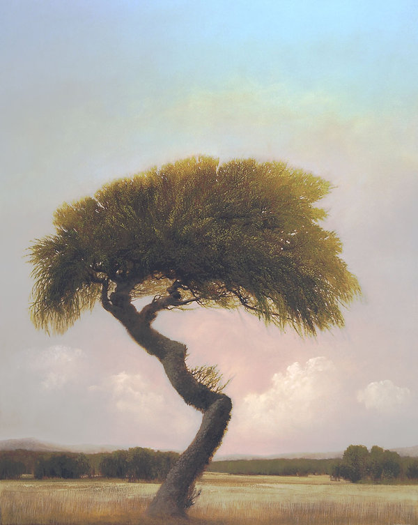 "Bijou Willow, 2014, by Robert Marchessault, oil/canvas, 60"" x 48"". Oklahoma City"