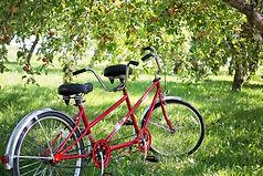 Circuits vélo tout chemin .jpg
