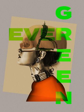 Evergreen_websPic.jpg