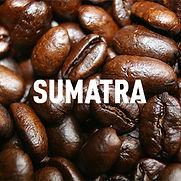 CB - Sumatra-300x300.jpg
