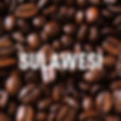 CB - Sualwesi-300x300.jpg