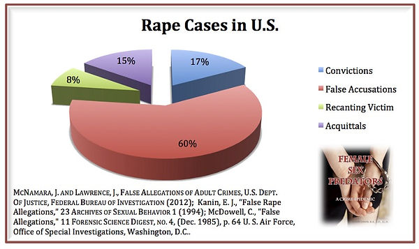rape cases graph.jpeg