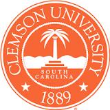 Clemson Student Arrested for False Rape Claim