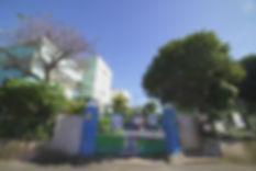 g015.jpg