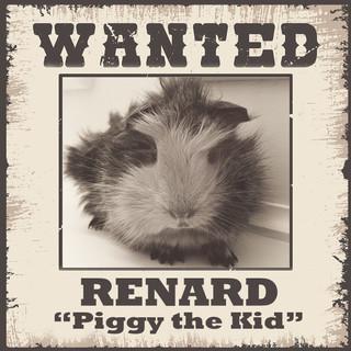 Wanted - Renard.jpg