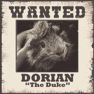 Wanted - Dorian.jpg