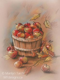 Fall_Apples_-_©_Marilyn_Tardif_-_MT_Designs_Art_Studio