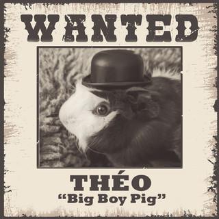 Wanted - Théo.jpg