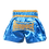 Thumbnail: Muaythai Combat shorts with decorate style A