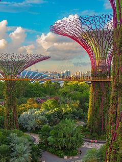 coleen-rivas-singapore.jpg