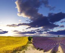 #Provence #France