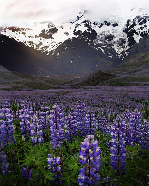 Iceland ❄️🔥_._._._._._._.jpg