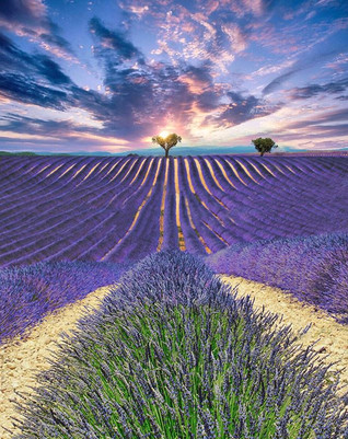 South of France 🇫🇷 ._._._._._.jpg