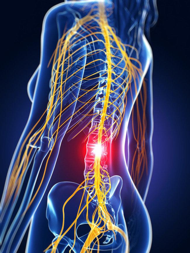 免費脊骨檢查
