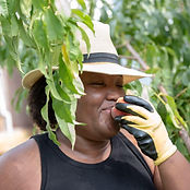 A woman in a black shirt an a straw hat eats a peach behind a tree