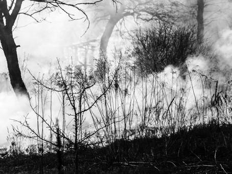 RESTLESS - poem & art