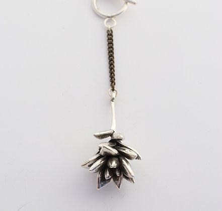 Graptopetalum Necklace