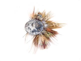 Half Pheasant Moon Brooch