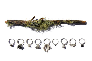 Lichen Ring Collection