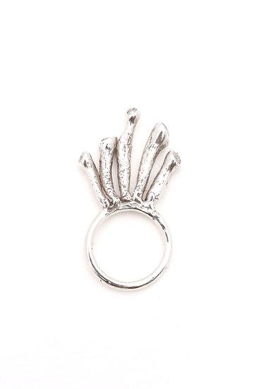 Crassula Alien Ring