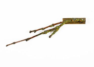 Lichen and Brass Brooch