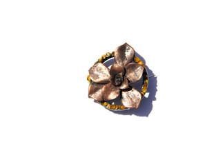 Copper Lichen Echeveria Brooch