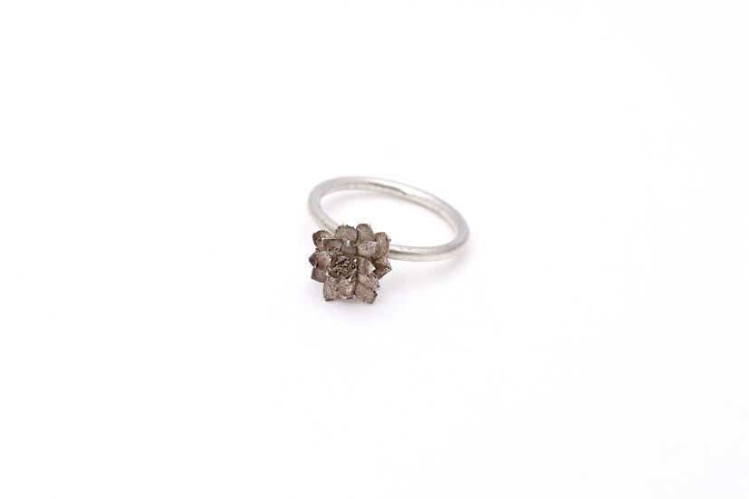 Delicate Echeveria Ring