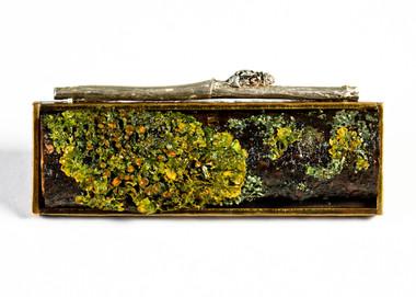 Lichen Frame with Silver Brooch