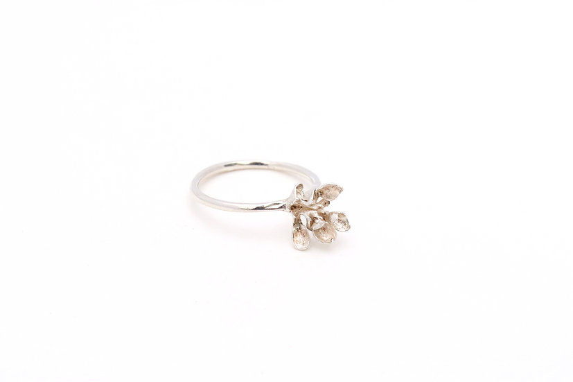 Delicate Kalanchoe Ring