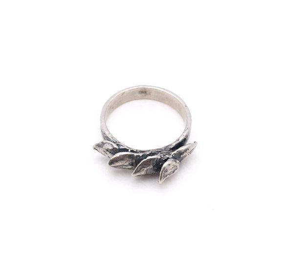 Echeveria Petal Ring