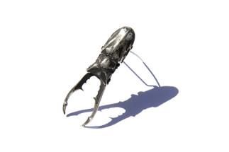 Silver Beetle Brooch