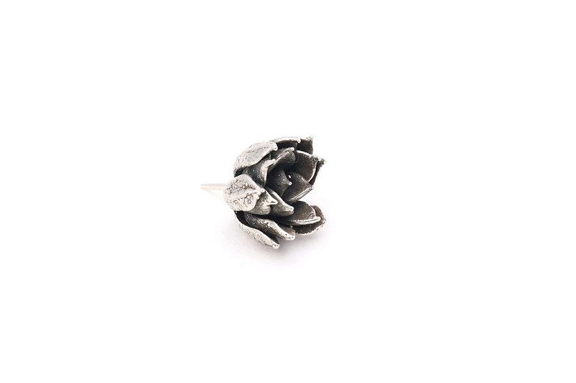 Echeveria Pin