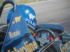 'Wingman' close up detail, Ronnie Peterson.