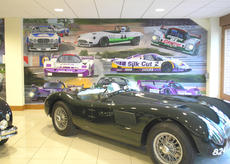 Part of the wall mural painted for JD Classics in Maldon, Essex, 2006.